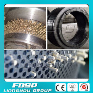 Customized Granulator Pellet Mill Matrix Spare Part Ring Die pictures & photos