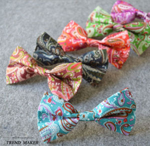 Fashion Paisley Designed Bow Tie (PM111) pictures & photos