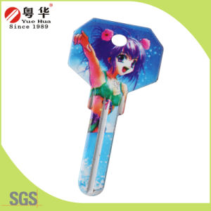 Factory Price Hot Sales Custom Colorful Fashion Metal Art Blank Key for Locks pictures & photos