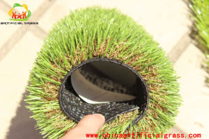 PE Material Outdoor Rooftop Artificial Grass pictures & photos