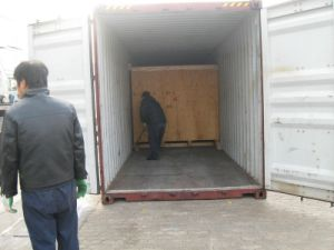 Shipment Handling for Dry Container pictures & photos