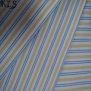 100% Cotton Poplin Yarn Dyed Fabric Rlsc50-6 pictures & photos