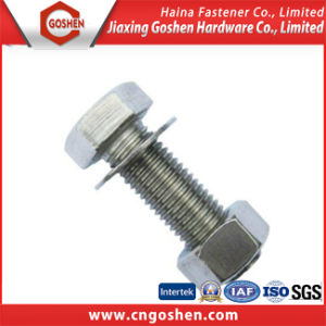 Stainless Steel Heavy Hex Bolt with Nut and Washer pictures & photos