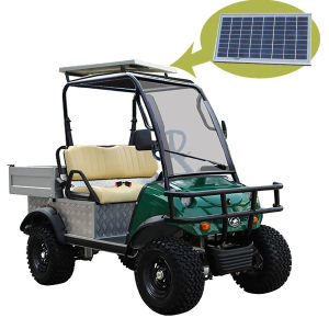 Solar Panel Golf Buggy Golf Van with Steel Tube Rolling Bar pictures & photos