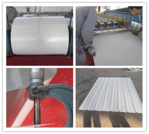 Prepainted Galvanized Steel Coil/Sheet PPGI 0.8-1.2mm pictures & photos