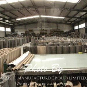 304 Stainless Steel Woven Mesh Sheet pictures & photos