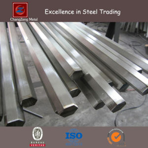 Stainless Steel Hexagonal Bar (CZ-HS01) pictures & photos