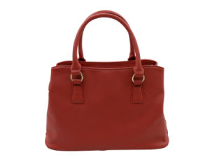 Hot Sales Wholesale Fashion Customized Logo Service Handbags (BDX-161050) pictures & photos