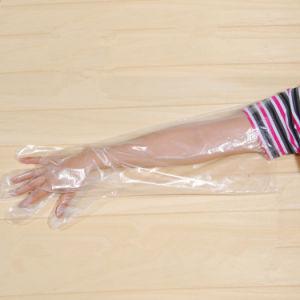 Good Sales PE Disposable Long Gloves