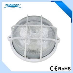 High Quality IP44 100W Outdoor Wall Lighting pictures & photos