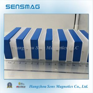 Powerful Permanent NdFeB Neodymium Block Magnet with Teflon Coating for Motor pictures & photos