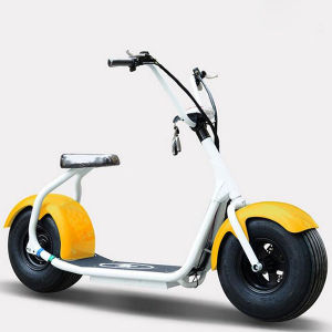 2 Wheels off Road Smart Scooter with 800W Power City Coco pictures & photos