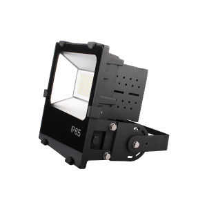 150W Philip Source LED Flood Light with Meanwell Driver and Smart Cooling System pictures & photos