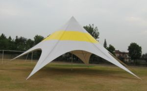 Trade Show Events Star Shade Tent pictures & photos