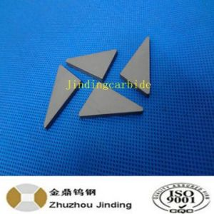 Various Size Tungsten Carbide Tip for Tamping Tine Tools for Railway Industry pictures & photos