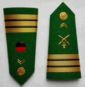 Military Badge pictures & photos