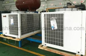 Bitzer Piston Condensing Unit for Low Temperature Storage pictures & photos