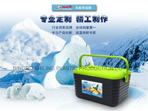for Picnic Use Cooler Box