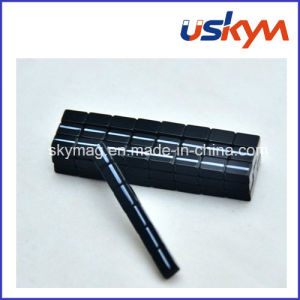 Black Epoxy Neodymium Magnet Permanent NdFeB Magnet pictures & photos