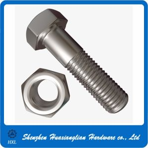Steel Plated Nickel Hex Bolt and Nuts with High Precise pictures & photos