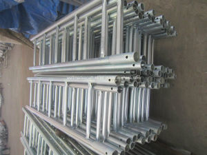 Cup Lock Scaffolding Parts Access Scaffold Steel Ladder pictures & photos