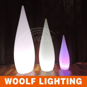 Rechargeable Color Changing Outdoor LED Decorative Garden Light pictures & photos