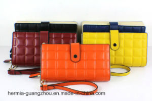 2016 New Style of Amboss Lady′s Wallet (HW250102)