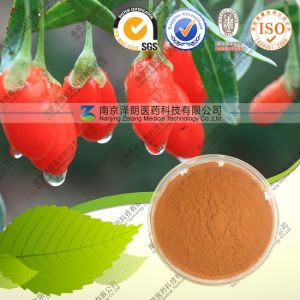 Distributor Bulk Price Goji Berry Berries Goji Extract Powder pictures & photos