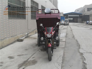 Three Wheel Motorcycle, China New Style, Cargo Tricycle, High Quality, Hot Sale, Gasoline Trike, Tuk Tuk (SY150ZH-C7) pictures & photos