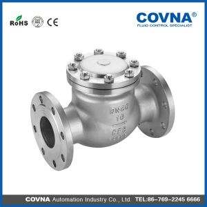 Stainless Steel Swing Check Valve Pn16 pictures & photos