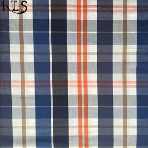100% Cotton Poplin Woven Yarn Dyed Fabric for Shirts/Dress Rls40-4po pictures & photos