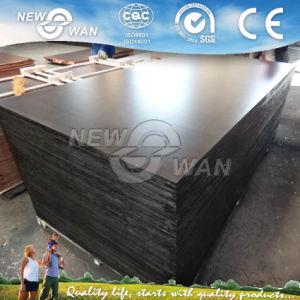 18mm Shuttering Marine Plywood Prices pictures & photos