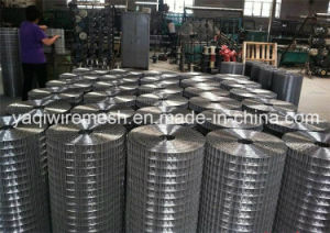 Welded Wire Mesh Made in China Is on Hot Sale pictures & photos