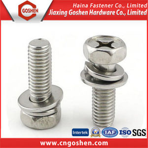 Stainless Steel Phillips Hex Head Screw & Washer Assemblies pictures & photos