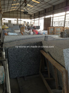 Chinese G439 Cream Pearl Granite Countertops for Kitchen in USA Hotel Project pictures & photos