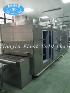 Factory Supply Tunnel Quick Freezer for Food Industry pictures & photos