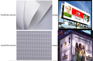 Popular PVC Fronlit Lamintaed Flex Banner (500X500 13 OZ) pictures & photos