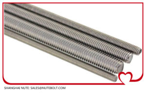 Threaded Rod Stainless Steel 304 and 316, DIN975 DIN976 pictures & photos