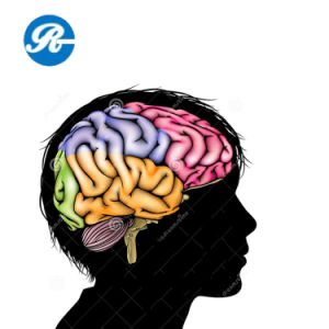 Material Piracetam for Improving Intelligence pictures & photos
