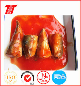 Vegetable Oil or Tomato Sauce Mackerel/Tuna Canned Sardines pictures & photos