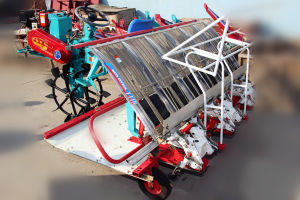 Walking Type 4 Rows Hot Sale Rice Planter pictures & photos