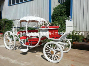 Lovely Cinderella Wedding Carriage pictures & photos