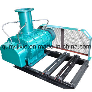 High Pressure Roots Vacuum Pump pictures & photos