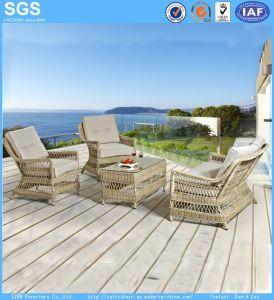 America Hot Sale Modern Outdoor Garden Furniture Patio Furniture Round Rattan Sofa Chair pictures & photos