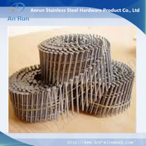 High Quality Hot Sell Steel Nail pictures & photos