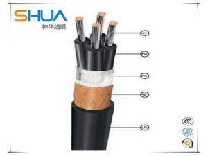 0.45/0.75kv Control Cable/Copper Core PVC Insulated and Sheathed/Control Cable pictures & photos