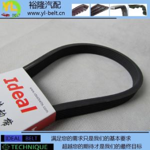 Air Conditioning Belt (6DPK1195)