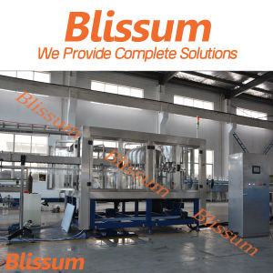 Stable Custom Designed Liquid Bottling Line pictures & photos