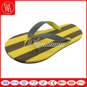 Women or Children Colorful Sandal Idoors Comfort Slippers pictures & photos