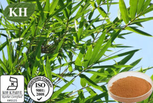 Bamboo Leaf Extract: Flavonoids, Organic Silica pictures & photos